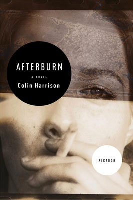 "Cover image: Marc Atkins / panoptika.net Design: Keith Hayes ""Afterburn"" by Colin Harrison Publisher: Picador"