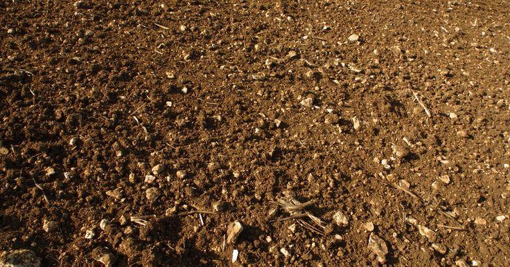 5 usos del suelo. El suelo cubre la superficie de la Tierra y es un valioso ecosistema. Se compone de minerales, nutrientes, agua, aire, materia orgánica y microorganismos. Debido a su composición, el suelo tiene una variedad de usos en diversas industrias.