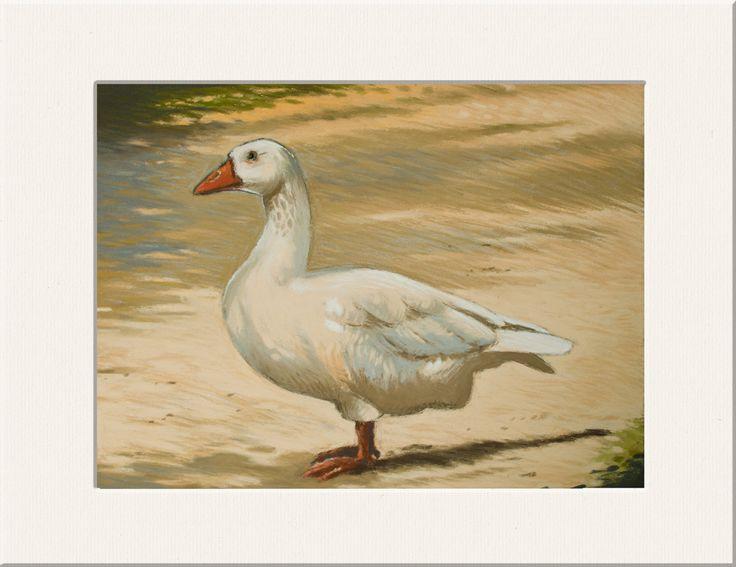 L'Oie, pastel sec sur pastelcard : Peintures par les-pastels-secs-de-valerie