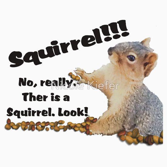 Squirrel... No really