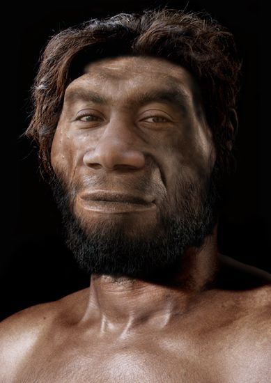 Homo erectus, first fire user.
