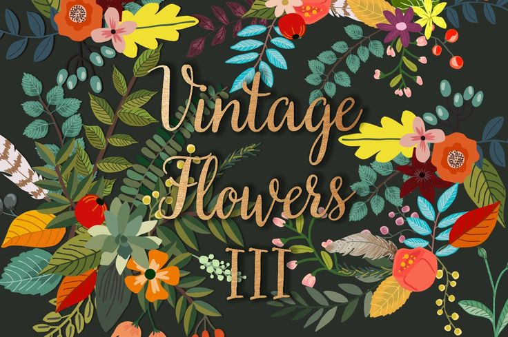 Beautiful Rifle Paper-esque floral illusrations by Mia Charro. #sale