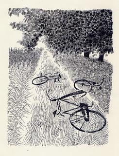Raccontare gli alberi. Pia Valentinis e Mauro Evangelista