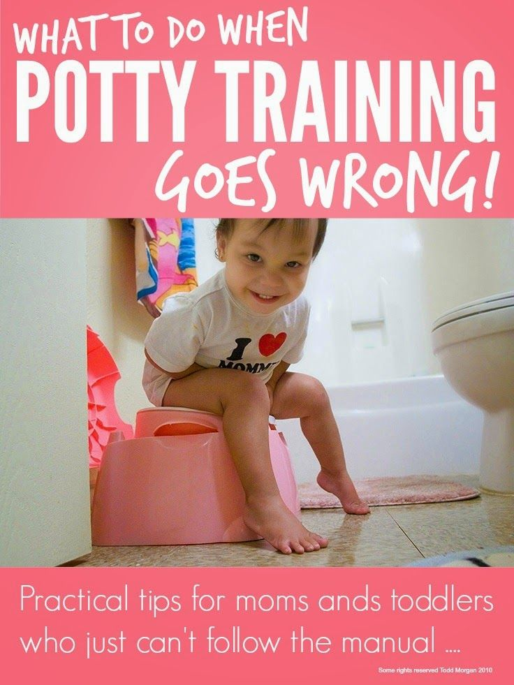 Practical tips on what to do when your little darling doesn't master potty training in 3 days as the books say they can, and it all goes horribly, horribly wrong ...