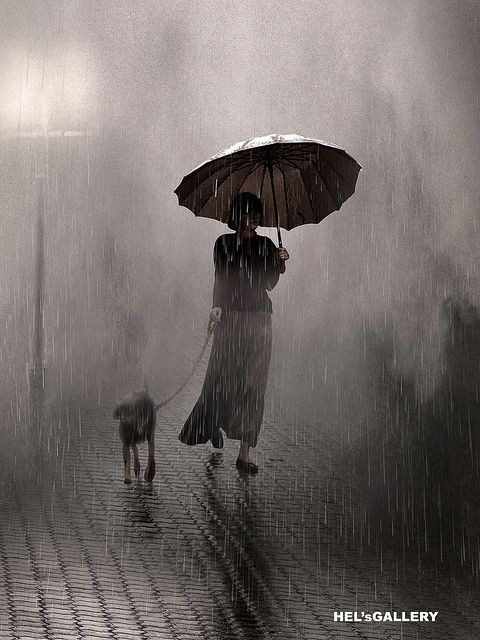 96 best rain and fog images on pinterest landscapes photography saul leiter saul uses lighting and other objects to frame his subjects and this is no different the rain and umbrella frames the woman and her dog fandeluxe Document