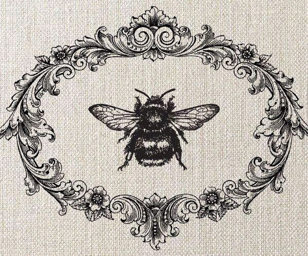 bumble bee, decorative frame, illustration, vintage style Idk why, but I'm wanting a bee tattoo :)