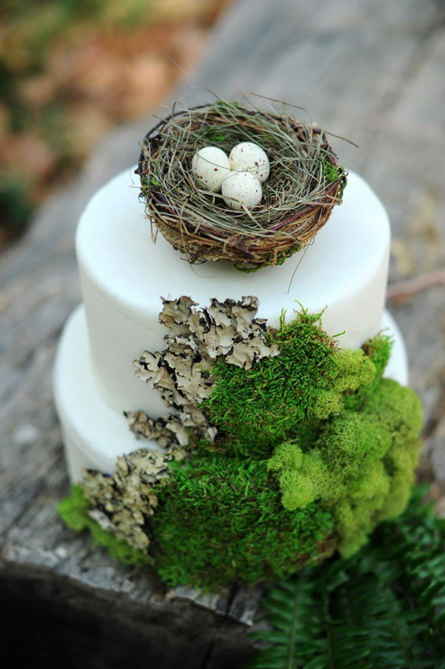 Forest wedding cake with moss and faux birds nest