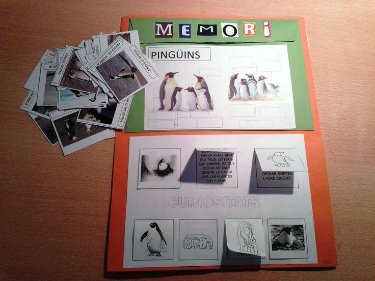 Projecte Pingüins. Presentació LAPBOOK 8