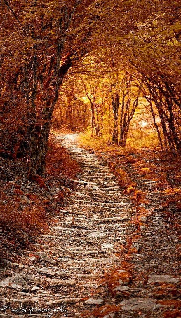 Caminho no Outono, Grécia.  Fotografia: Kate Eleanor Rassia no 500px.  https://www.epochtimes.com.br/trilhas-mundo-tirar-folego/#.WOBj1lXyvIV