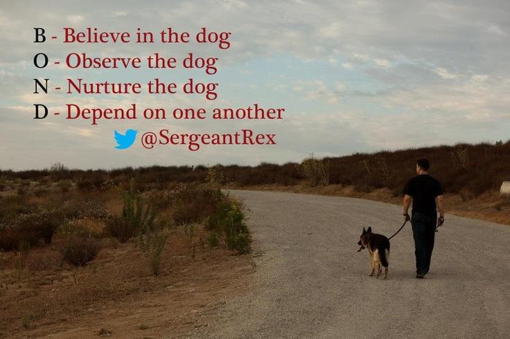 A bond between dog and handler | Sergeant Rex K9 quotes ...