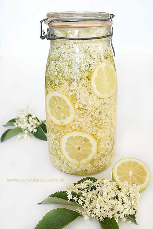 Sciroppo di fiori di sambuco (preparazione in vaso) - Elderflower syrup