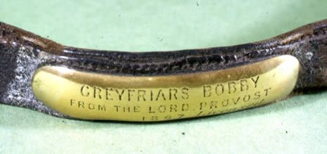 Edinburgh Museums - Greyfriars Bobby collar in The Museum of Edinburgh