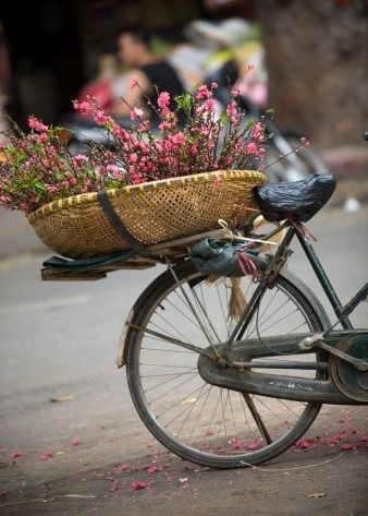 Flowers for sale on the street in Hanoi.