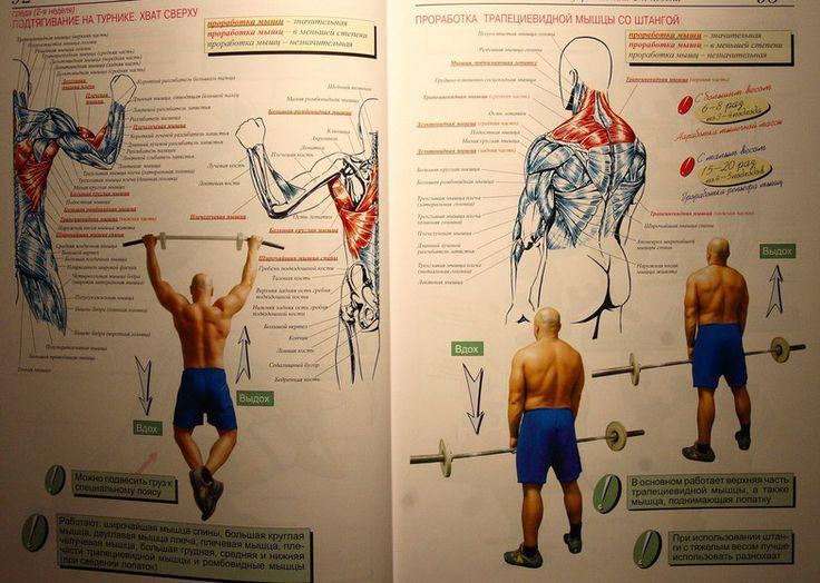 Атлетическая гимнастика - упражнения на мышцы спины IMG_9587