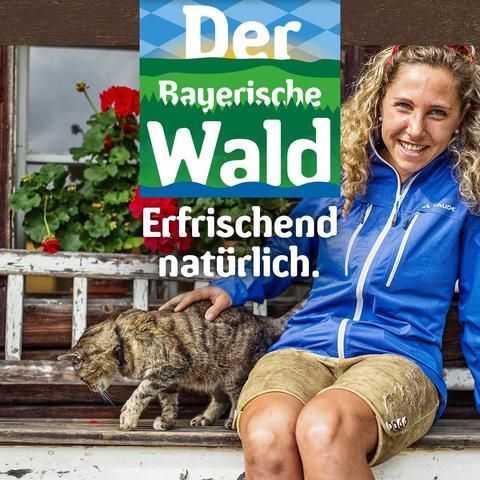 Das offizielle Portal für Reisen und Urlaub im Bayerischen Wald. Unterkünfte, Wandern, Radeln, Familienurlaub, Wellness und Vielfalt in Natur und Landschaft.