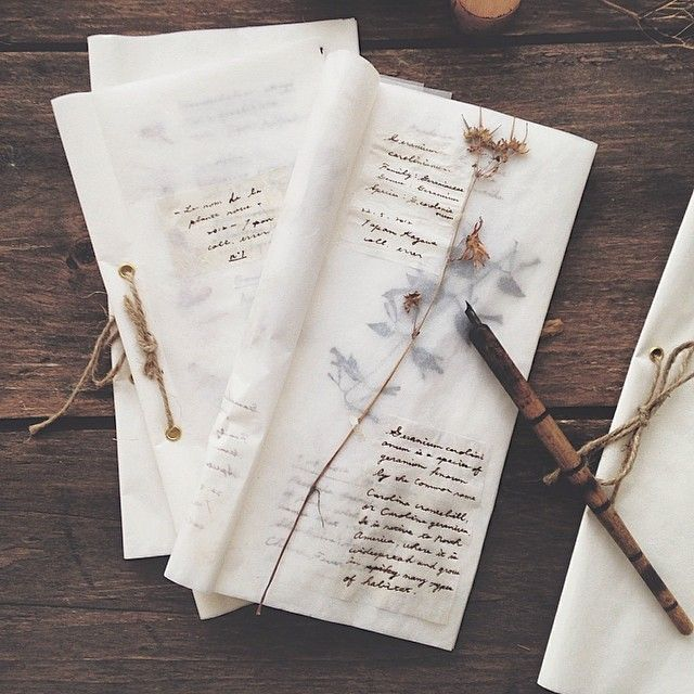 old bundles of pages with dried flowers / beige aesthetics artsy indie tumblr