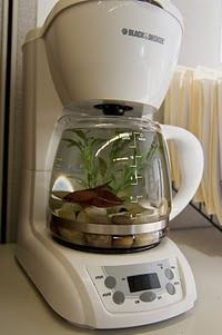 First: remove all wiring. Coffeemaker fishtank.  I LOVE THIS!