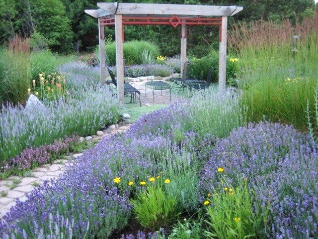 Flower Garden Ideas In Michigan 24 best landscape ideas for michigan images on pinterest | flower