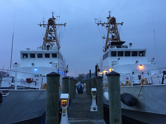 Sea Shepherd's The Farley Mowat And The Jules Verne