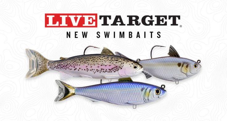 Tackle Warehouse Bass Fishing Tackle