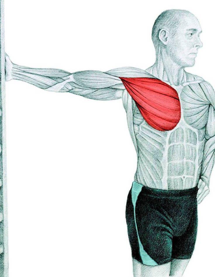 Растяжка грудных мышц у стены