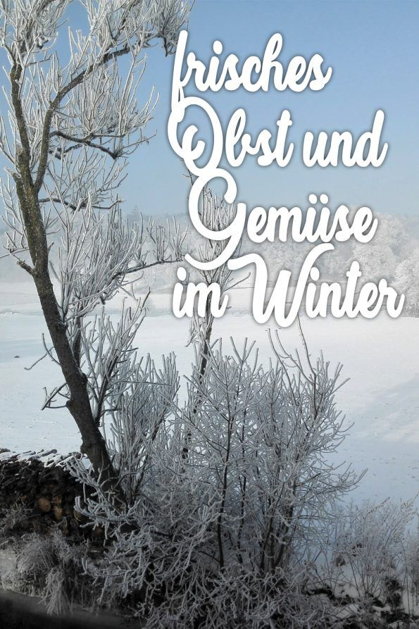 Frisches Regionales Gemuse Im Winter Ernten Wunderschoner Blogger