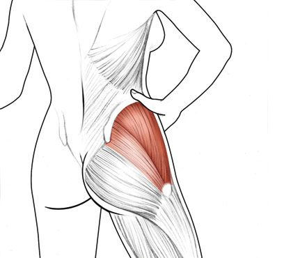 You Want: A Butt Dimple |Target: The gluteus medius Why it works: You may think you're defining your booty doing routine squats and lunges, but stronger muscles, like hamstrings, tend to take over. Which stinks, because the medius—the fan-shaped muscle that creates the booty divot—gets no love, explains Brent Brookbush, a trainer in NYC and the author of Fitness or Fiction. Pay that medius attention: Toners that have you balance on one leg will zero in on the muscle and give it one big…