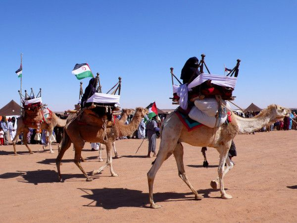 Occupied Western Sahara, the last colony in Africa 16. #Africa #FreeSahara #SaharaLibre #WesternSahara