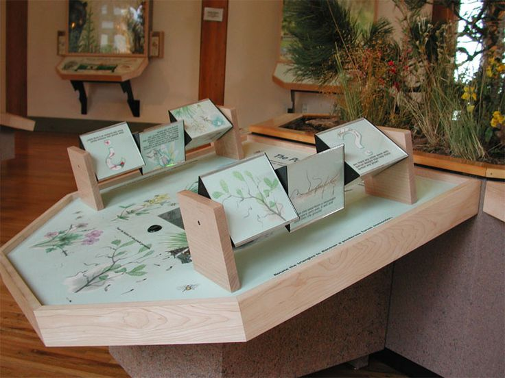 Lookout Mountain Nature Center, Colorado Exhibits designed and developed by Advanced Resource Management