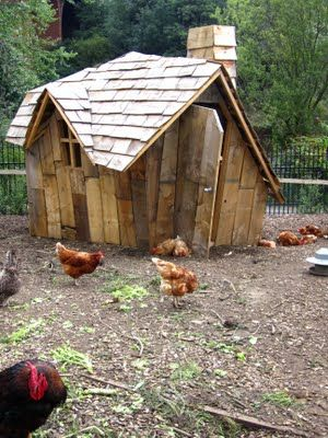 Just love it:-) Enchanted Chicken Coop