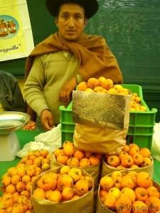 Ecoferia Frutos de la Tierra 2012 | Yo Compro En El Mercado de Productores