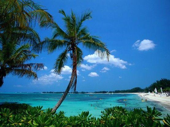 Coco Cay, Bahamas  ✨S. B. Pinterest: Slimbaby86✨