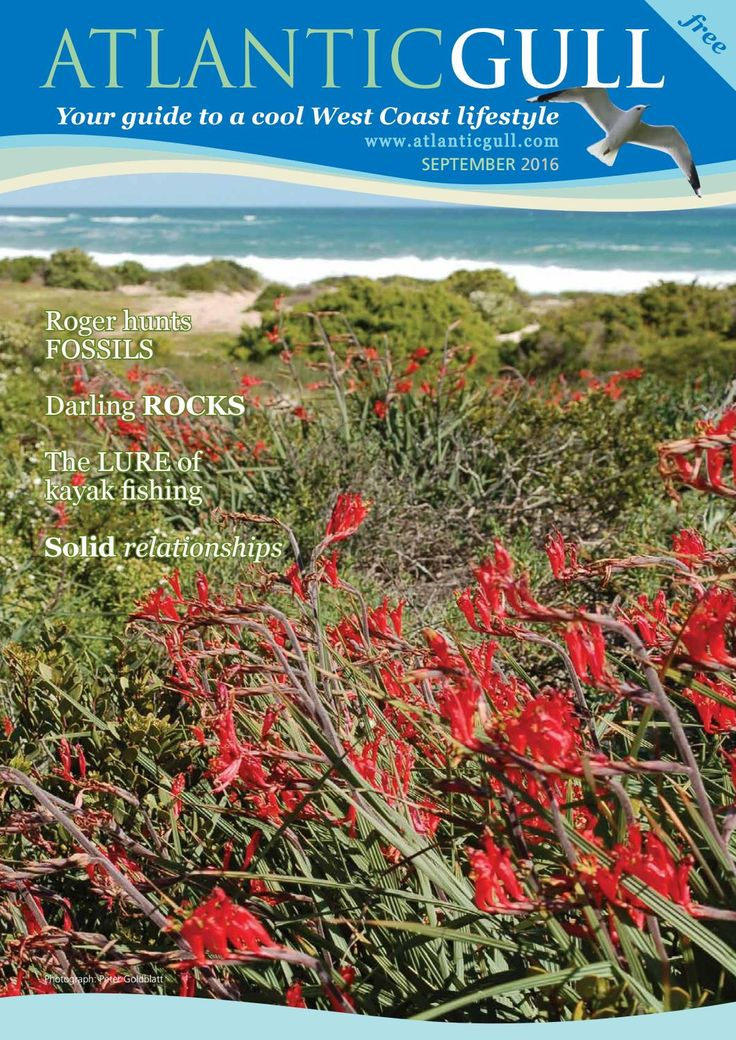 Atlantic Gull September 2016  Floral feast at the disarmingly beautiful West…