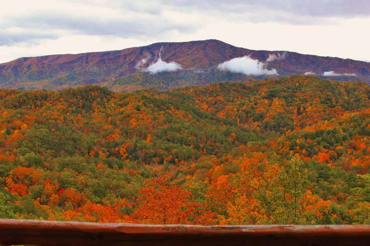When you book your Smoky Mountain cabin rental for your wedding, choose a cabin with the best views for your photos.