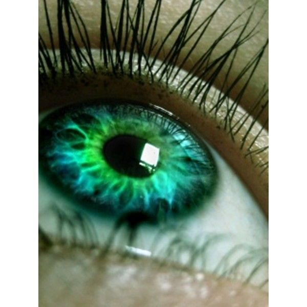 1000 Ideas About Rare Eye Colors On Pinterest Eye Color