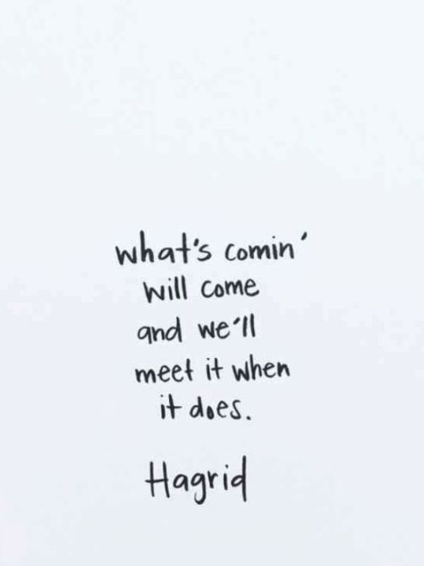 50 Best Harry Potter Quotes About Friendship Love And Family Harry Potter Quotes Inspirational Friendship Quotes Harry Potter Friendship Quotes