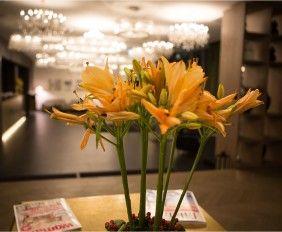 Falkensteiner Hotel Wien – Margareten #hotel #vienna #wien