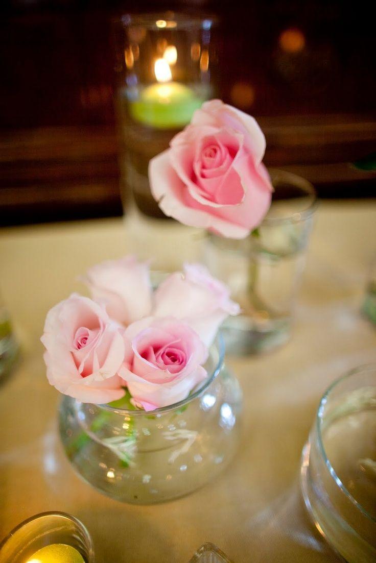 CdM Rosas rosas