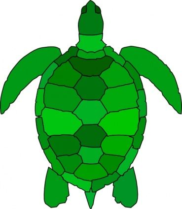13 best clip art images on pinterest sea turtles turtles and clip art rh pinterest com sea turtle clip art black and white sea turtle clip art pictures