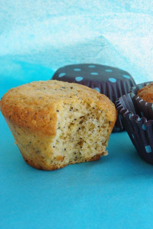 Muffins au citron et graines de pavot III