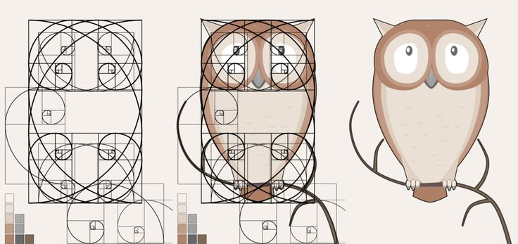 """""""The Fibonacci Little Owl,"""" by ark4n on deviantART -- """"Let's play with the Golden Ratio ^_^ """""""