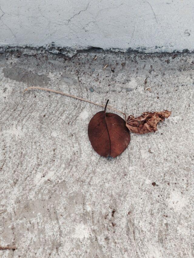 Minimal foto por MERY | CRISMAS