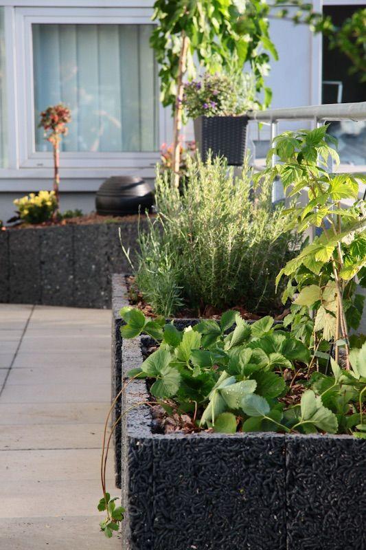 www.zoldlevego.hu Alcon iroda terasz növénydekoráció. Újrahasznosított műanyagból készült növénytartóba ültetett fűszerkert.