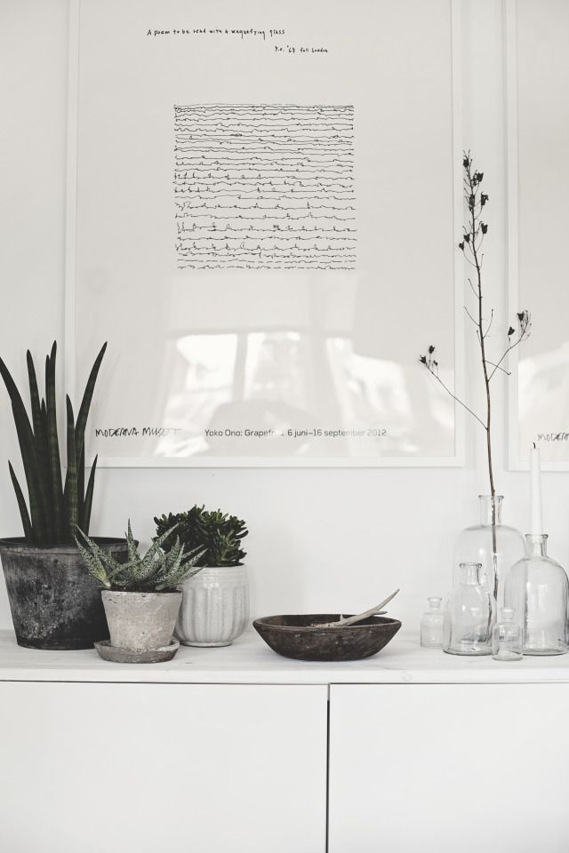 Cool plants in pots in three shades of grey.