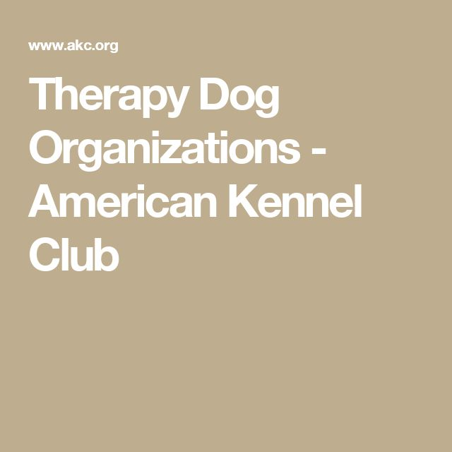 Therapy Dog Organizations - American Kennel Club