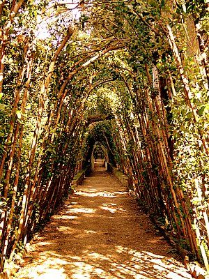 Boboli Gardens. Florence, Italy. Expensive to walk through, but a great option.