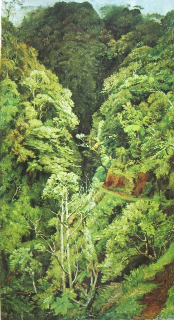 Dullah - Hutan di Gunung Merapi, Jawa Tengah
