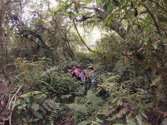 Exploring Mt Sanghyang, Tabanan-Bali
