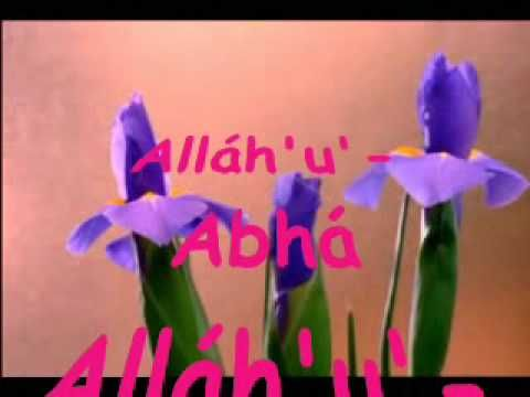 Alláh'u' Abhá ♡ Flower Blooming ♡ Blumen ♡  Nature ♡ ♪  الله ابهی  ♡