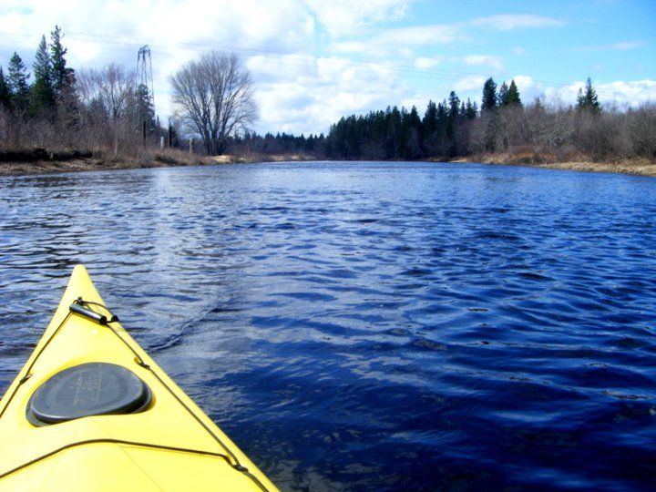 Still waters run deep...kayaking on the beautiful Canaan river in the spring